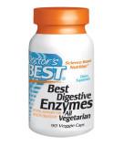 Best Digestive Enzymes