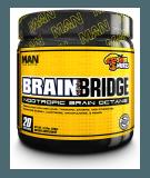 Brain Bridge